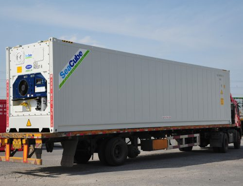 SeaCube Steadfast in Supporting Shipping Lines' Refrigerated Container Needs